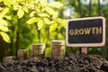 Money growing, Business success concept. Golden coins in soil Chalkboard on blurred natural background Royalty Free Stock Photo
