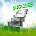 Money ladder origami in the meadow Royalty Free Stock Photography