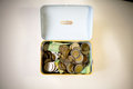 Money in the piggy bank Royalty Free Stock Photo