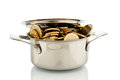 Money pot a cooking is well filled with euro coins symbolic photo for funding Royalty Free Stock Photo