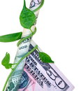 Money squeeze an american fifty dollar bill being squeezed by a vine Stock Photography