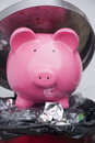 Money to waste piggy bank in a dust bin Royalty Free Stock Photos