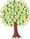 Money tree with dollars Royalty Free Stock Photo