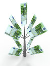 Money tree from euro. Business concepts Royalty Free Stock Photo