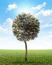 Money Tree European Euro Royalty Free Stock Photo