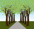 Money Tree Forest Path Royalty Free Stock Photos