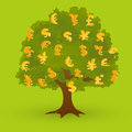 Money tree gold currency symbols on green Stock Photos