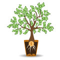 Money tree growing from a coin root. Green cash banknotes tree in ceramic pot. Modern flat style concept vector Royalty Free Stock Photo
