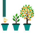 Money tree growth concept Royalty Free Stock Photo