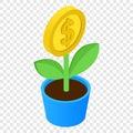 Money tree isometric 3d icon