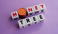 Money tree text and in uppercase letters inscribed on small white cubes with the o in replaced by a pile of coins purple Royalty Free Stock Images