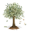 Money tree with us dollar banknotes in place of leaves some notes falling down at white background Stock Photo