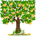 Money tree vector illustration of a with golden coins on white background Stock Photography