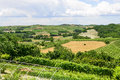 Monferrato italy country landscape of asti piedmont at summer with vineyards Stock Photography