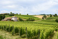 Monferrato italy country landscape of asti piedmont at summer with vineyards Stock Photos