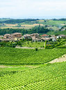 Monferrato italy country landscape with vineyards from rosignano asti piedmont at summer Royalty Free Stock Image