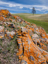 Mongolian steppe with colorful rocks
