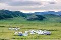 Mongolian yurts on steppe