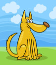 Mongrel dog cartoon illustration Stock Photography