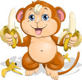 The monkey with bananas which is holding in its paws Stock Photos
