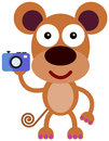 Monkey camera illustration of a carrying a Royalty Free Stock Images