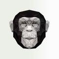 Monkey Cartoon vector illustration. Black and white animal image.