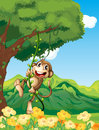 A monkey clinging at the vine plant illustration of Stock Photography