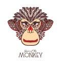 Monkey Color Face