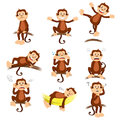 Monkey with different expression a vector illustration of Stock Photo