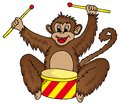 Monkey with drum Stock Photo