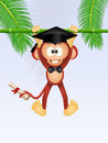 Monkey graduate Royalty Free Stock Photo