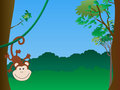 Monkey hanging Royalty Free Stock Images