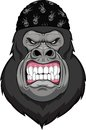 Monkey head mascot vector illustration Stock Photos