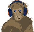 Monkey with headset light brown Royalty Free Stock Photo