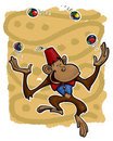 Monkey Jongleur. Stock Photos