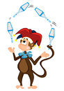 Monkey juggler Royalty Free Stock Photo
