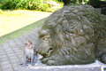 Monkey with lion statue image of the small sitting the big Royalty Free Stock Image