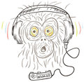 Monkey listens the music Stock Photography