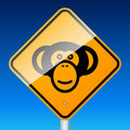 Monkey on road Royalty Free Stock Images