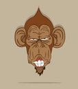 Monkey stylish vector on gray background Royalty Free Stock Photography