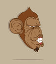 Monkey stylish vector on gray background Royalty Free Stock Photos