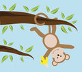Monkey swinging in tree with banana Stock Photo