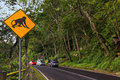 Monkey traffic sign - Indonesia Bali Royalty Free Stock Photo