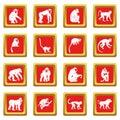 Monkey types icons set red