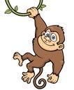 Monkey vector illustration of cartoon Royalty Free Stock Photos