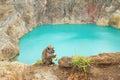 Monkey On Volcano