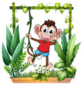A monkey waving illustration of his hand in the garden on white background Royalty Free Stock Images