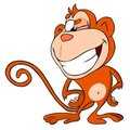 Monkey winks Stock Image