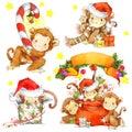 Monkey Year set. Funny cartoon monkey. Watercolor monkey and New Year decoration elements. Royalty Free Stock Photo