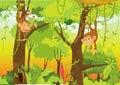Mono en selva
